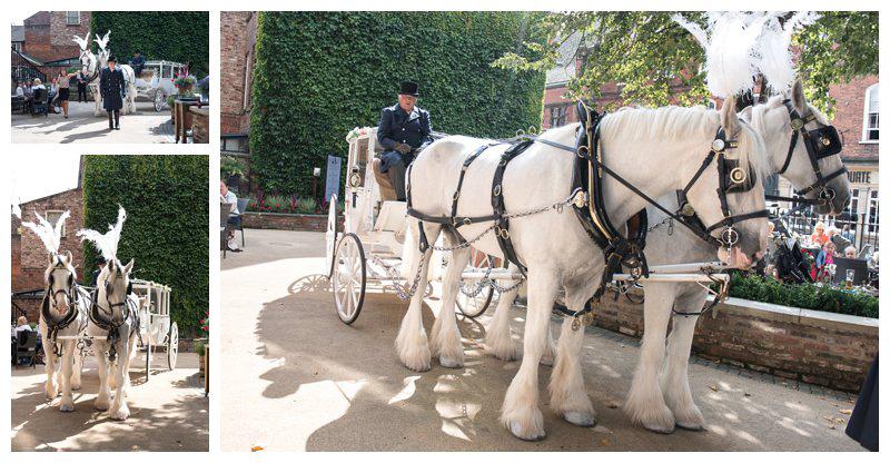 horse-carridge-wedding-transport